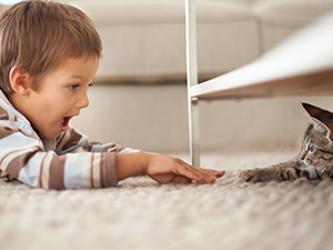 kids-pets-carpet-3